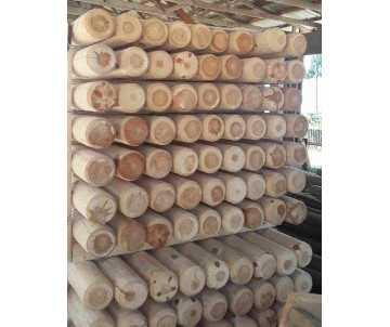Rondin de bois diamètre 6 cm
